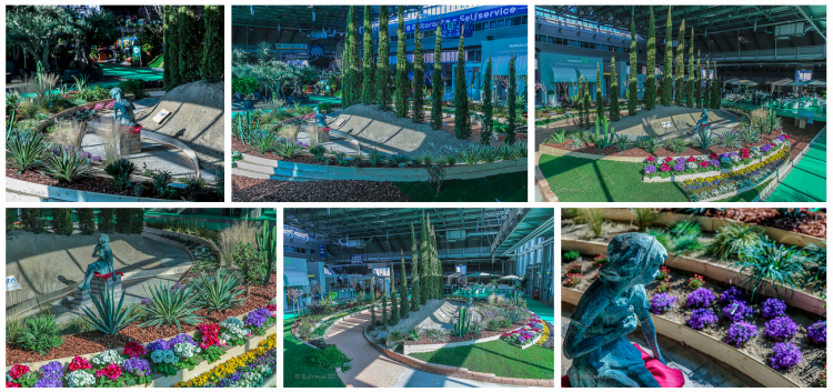 resizedimage750353-collage-giardino6