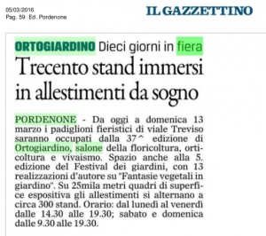 gazzettino_503