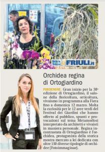 ilfriuli-orchidee
