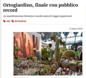 messaggero_online_1403